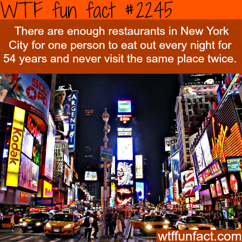 funny-fact1