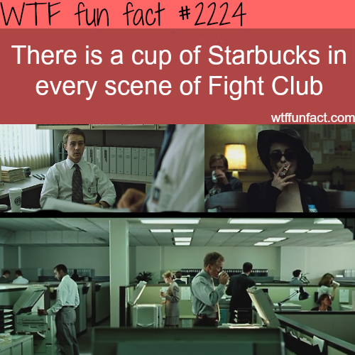 funny-fact8