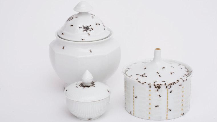 porcelain-ants4
